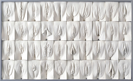 grande-mural-da-vagina-de-jamie-mccartney